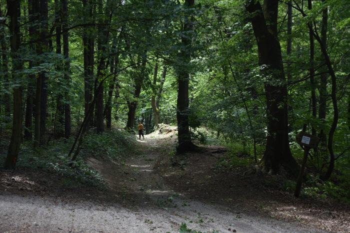 dočasná prístupová cesta cez Brezinu k hradu