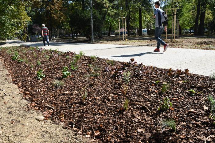 záhony nových kvetov v parku
