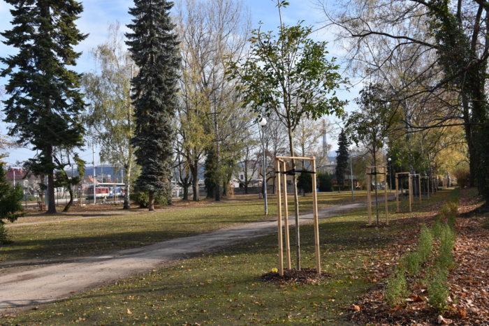 park MRŠ
