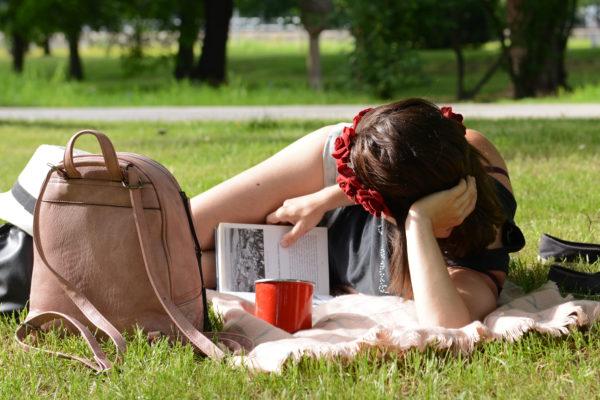 piknik2